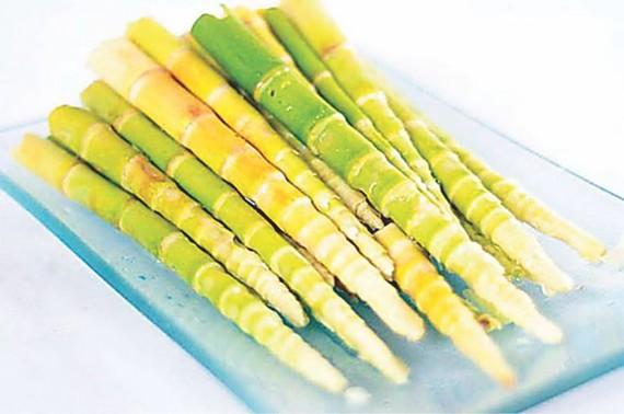 竹筍富含氨基酸,一直被人們作為素食中的特殊美味。(圖源:互聯網)