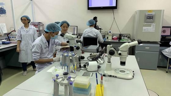 國際大學學生在實驗室工作。