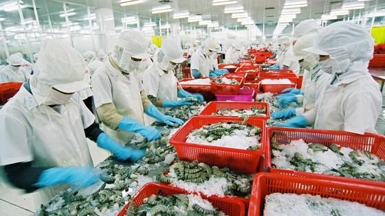 我國水產品外銷中國的產量遞減。(示意圖源:互聯網)