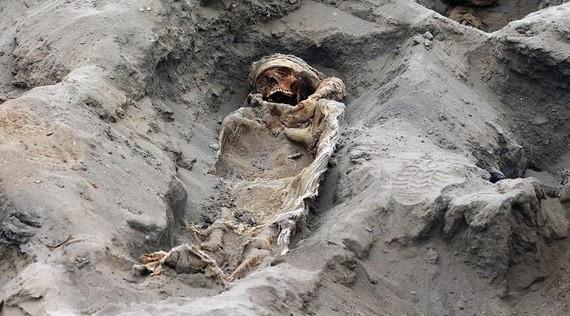 秘魯考古學家表示,他們在秘魯首都利馬北部奇穆文明遺址發掘出了227具屍體,從現場屍骨的尺寸判斷,這些都是兒童的屍體。(圖源:AFP)