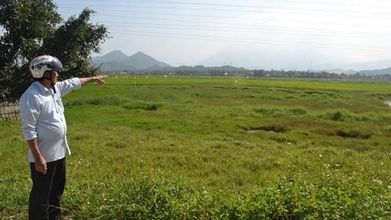 峴港市公開土地儲備面積資訊。(示意圖源:互聯網)