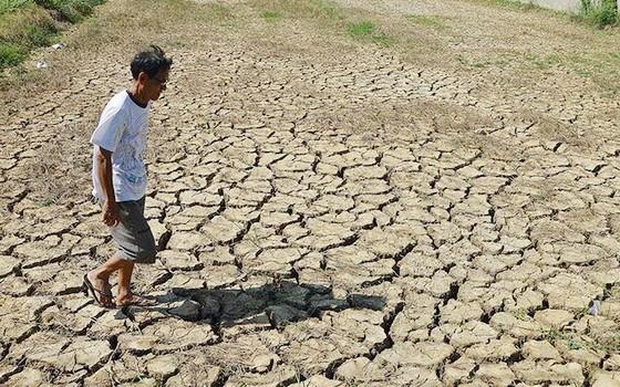 九龍江平原區域乾旱情況日益嚴重。(圖源:玲芳)