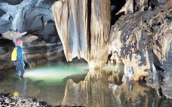 在廣平省新發現的洞穴之一。(圖源:互聯網)