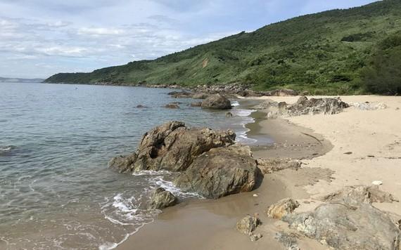 遊客罕至的寵草海灘。