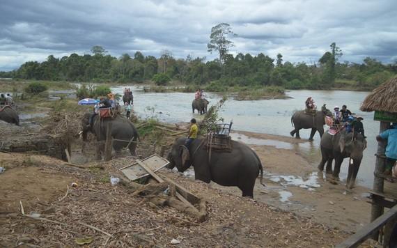 圖為遊客騎大象遊玩別殿旅遊區。(圖源:高原)