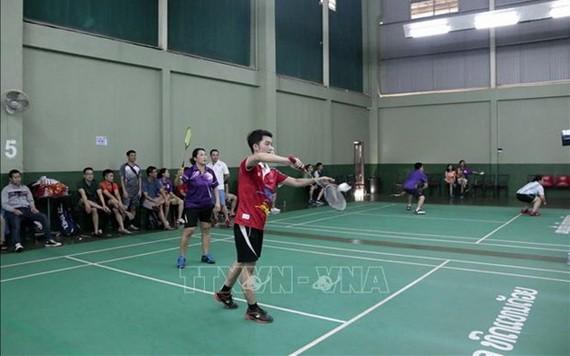 羽毛球比賽。(圖源:越通社)
