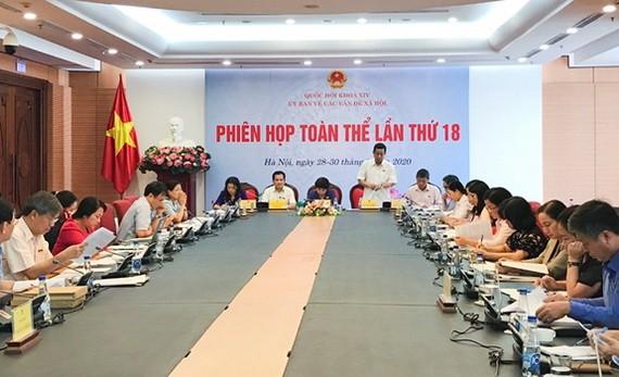 國會社會問題委員會第十八次全體會議現場。(圖源:黎孝)