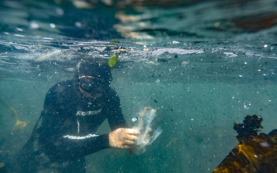澳洲最新研究預估,全球海底應有超過1400萬噸塑膠微粒。(圖源:歐新社)
