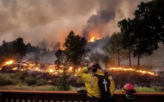 加州圓石溪山火燃燒熾烈,消防員望大火興嘆,束手無策。(圖源:AP)
