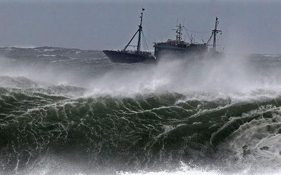 國家水文氣象預報中心:本月內將有2至3場颱風和低氣壓在東海區域活動。(示意圖源:互聯網)