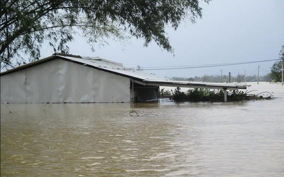 洪水淹沒承天-順化省廣田縣的不少鄉村。(圖源:秋莊)