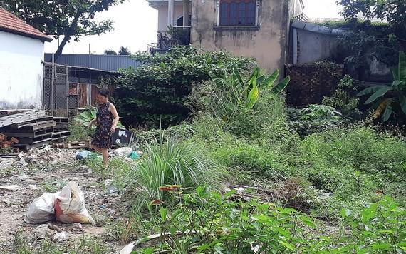 阮玉福的地皮已完成土地使用費義務,但不能將使用目的從園地轉換成住宅用地。