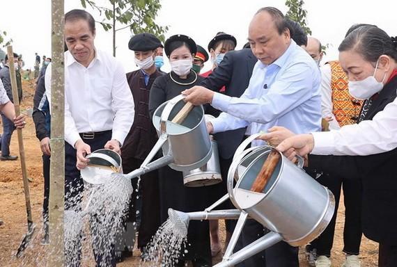 政府總理阮春福參加植樹活動。(圖源:越通社)