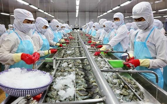 圖為蝦類加工工段。(圖源:耀基)
