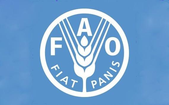 聯合國糧農組織(FAO)推特截圖