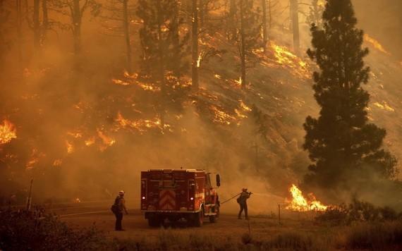 美國加州山火持續蔓延。(圖源:AP)