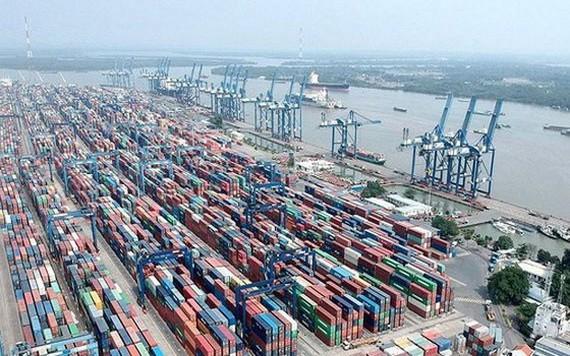 桔萊新港暫停接收貨物