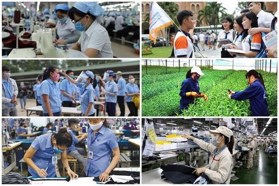 多個行業勞工在此波疫情中獲得政府的輔助。