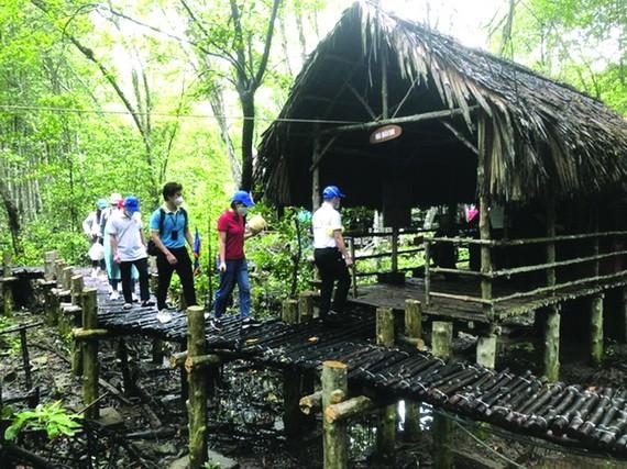 遊客參觀芹耶紅樹林。