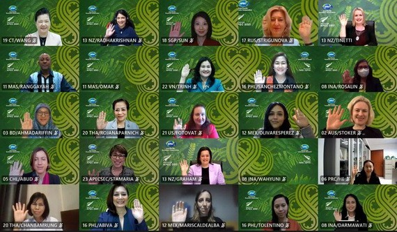 APEC婦女與經濟論壇會議視訊。(圖源:互聯網)