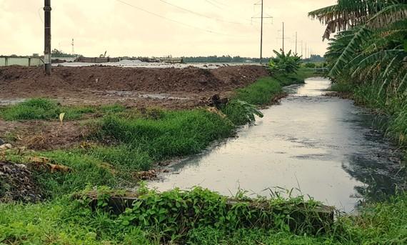 Khu vực cạnh nhà máy xử lý nước thải tập trung tại KCN An Nghiệp, tỉnh Sóc Trăng. Ảnh: TUẤN QUANG