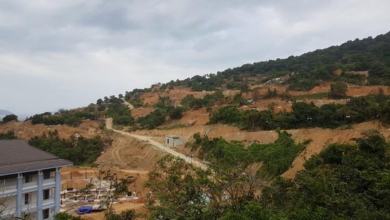 Đà Nẵng chỉ cho phép xây dựng công trình lưu trú, không cho phép xây dựng công trình cư trú trên Sơn Trà