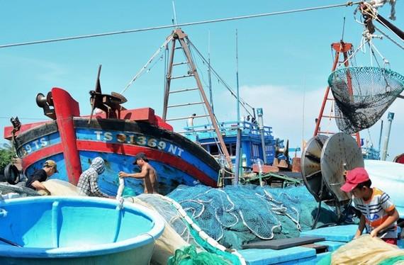 Khai thác hải sản đòi hỏi phải có xác nhận nguồn gốc nguyên liệu khai thác (S/C) theo quy định. Ảnh theo Báo Ninh Thuận