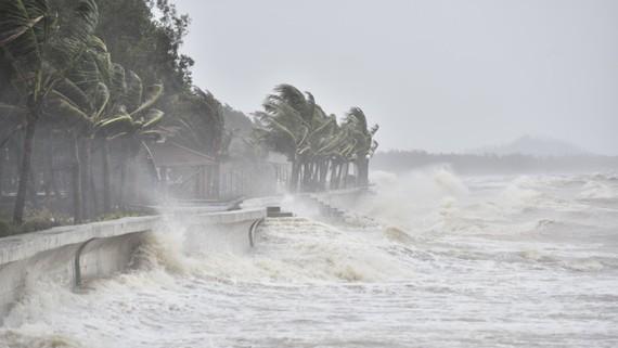 Chủ động kịch bản ứng phó với 5-7 cơn bão vào đất liền