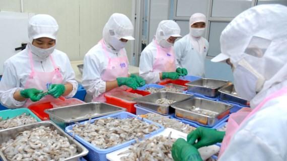 A shrimp processing plant in Hiep Phuoc Industrial Park, HCMC (Photo: SGGP)