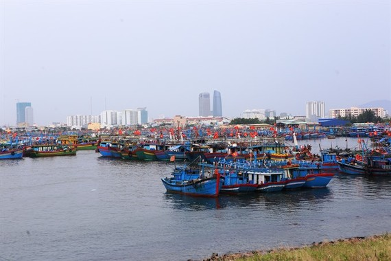 Fishing boats dock at a port in central Vietnam. All fishing boats must run cruise tracking device for 24-hours a day when at sea to prevent illegal fishing. (Photo: VNS)