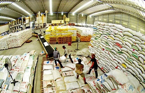 Rice bags stockpiled for export at a warehouse in the Mekong Delta (Photo: SGGP)