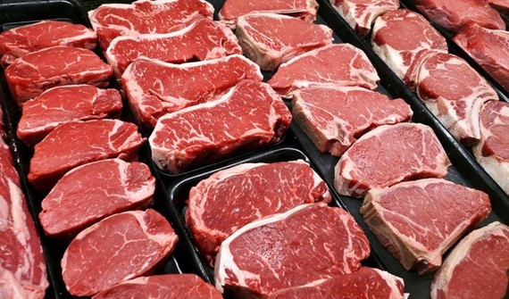 Brazil plans to export live cattle to Malaysia
