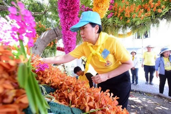 A volunteer is decorating an area along the procession route of His Majesty King Maha Vajiralongkorn's coronation (Photo: thainews.prd.go.th)