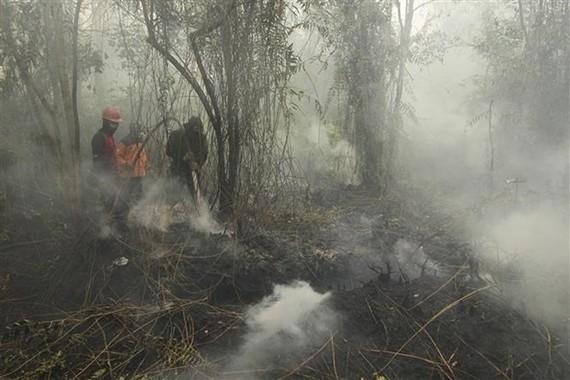 Smoke from a forest fire in Riau, Indonesia (Photo: Xinhua/VNA)