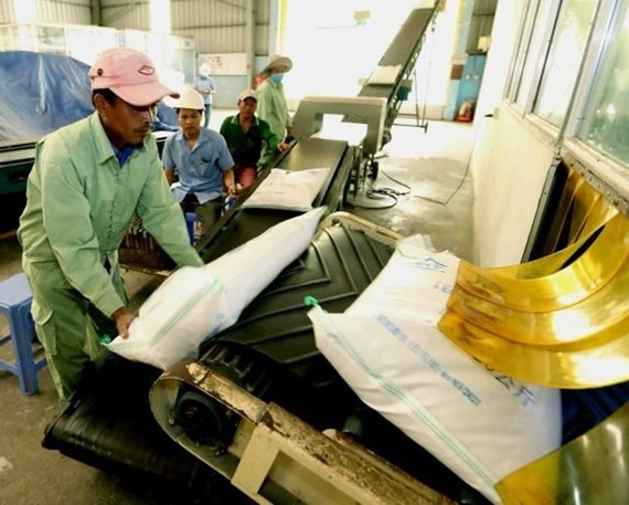 The Ministry of Industry and Trade has granted 47 certificates of eligibility to rice export businesses over the past year. (Illustrative image. Source: VNA)