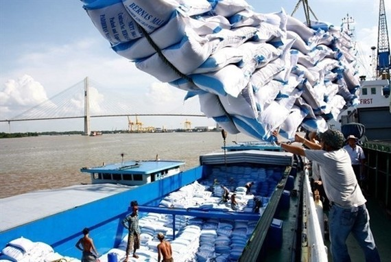 Rice is loaded at Saigon Port in HCMC (Source: VNA)