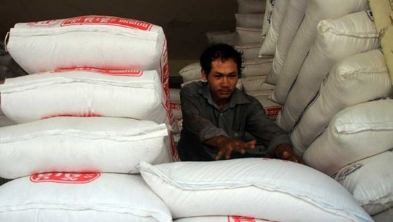 Cambodian rice exports to international markets grew by more than 21 percent in the first two months of this year (Photo: www.phnompenhpost.com)