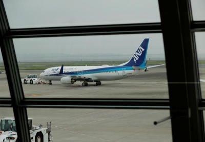 An aircraft of ANA (Photo: internet)