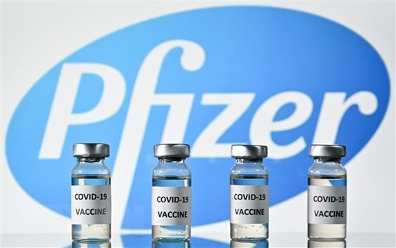 Conditional registration for the COVID-19 vaccine produced by Pfizer company has been approved for use in Malaysia. (Photo: VNA)