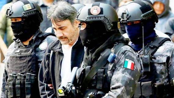 """Damaso """"El Licenciado"""" Lopez, kế nhiệm Joaquin """"El Chapo"""" Guzman, trùm tập đoàn ma túy Sinaloa, bị bắt tại Mexico City ngày 2-5-2017. Ảnh: REUTERS"""