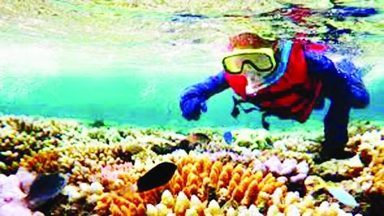 Australia bảo tồn rạn san hô lớn nhất thế giới