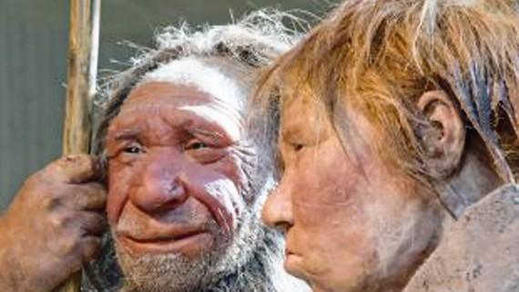 Phát hiện mới về tổ tiên loài người
