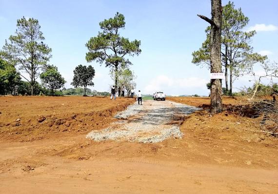 Nhiều khu đất ở Bảo Lộc được chủ đất tự san lấp mặt bằng, rồi được cò quảng cáo sẽ trở thành vị trí đắc địa trong tương lai gần, để dụ người mua. Ảnh: ĐOÀN KIÊN