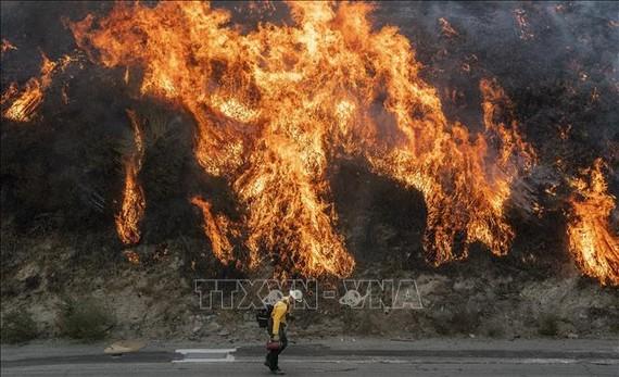 Các đám cháy rừng lan rộng tại Newhall, California, Mỹ, ngày 11-10. Ảnh: AFP/TTXVN