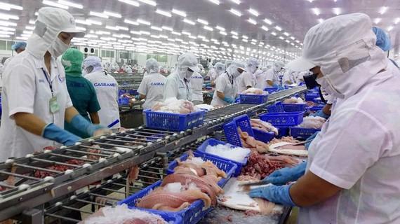 Chế biến thủy sản xuất khẩu