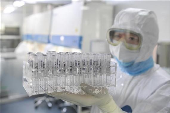 Kỹ thuật viên làm việc trong phòng thí nghiệm ở Hợp Phì, tỉnh An Huy, Trung Quốc. Ảnh: THX/TTXVN