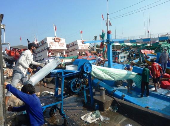 Dù chịu ảnh hưởng của dịch Covid-19,  nhưng ngư dân Bình Thuận vẫn kiên cường bám biển
