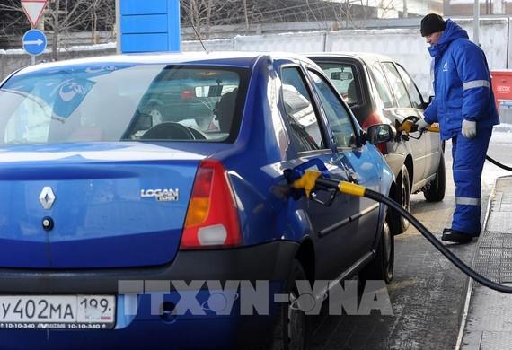 Nga cấm nhập khẩu xăng dầu