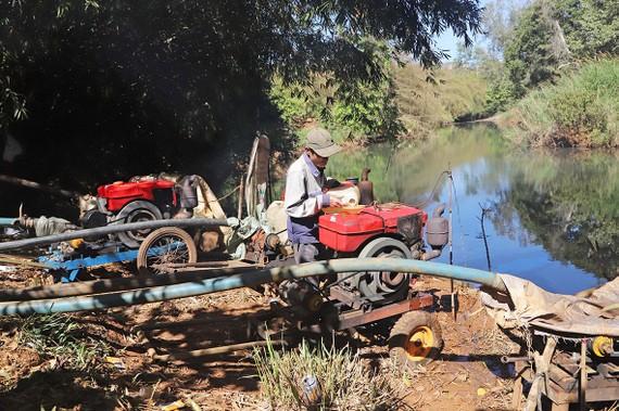 Người dân tại xã Lộc Ngãi, huyện Bảo Lâm, tỉnh Lâm Đồng  vận hành máy bơm tưới cứu hạn cà phê. Ảnh: Đoàn Kiên
