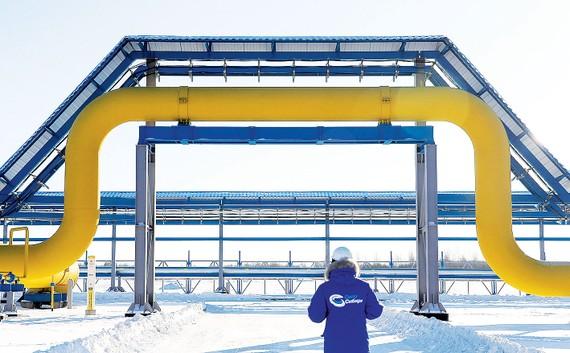 Đường ống dẫn dầu tại Tây Siberia của Nga